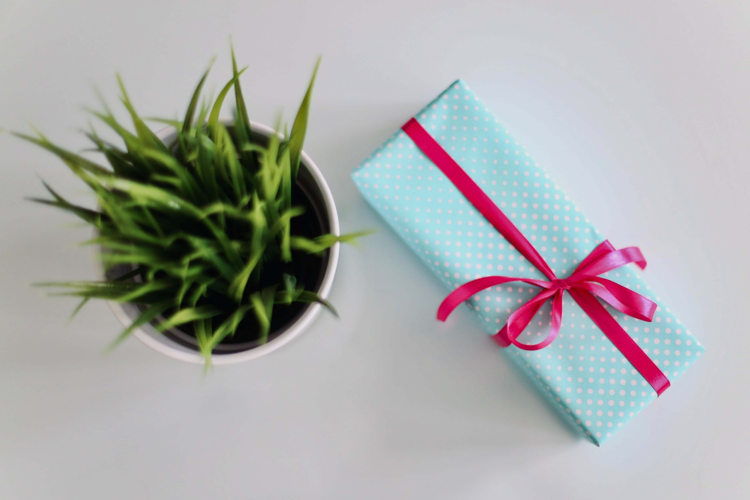 Mały prezent